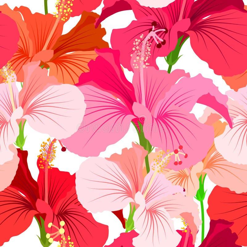 Красивая безшовная флористическая предпосылка картины джунглей Предпосылка цвета тропических цветков яркая Цветок гибискуса реали бесплатная иллюстрация