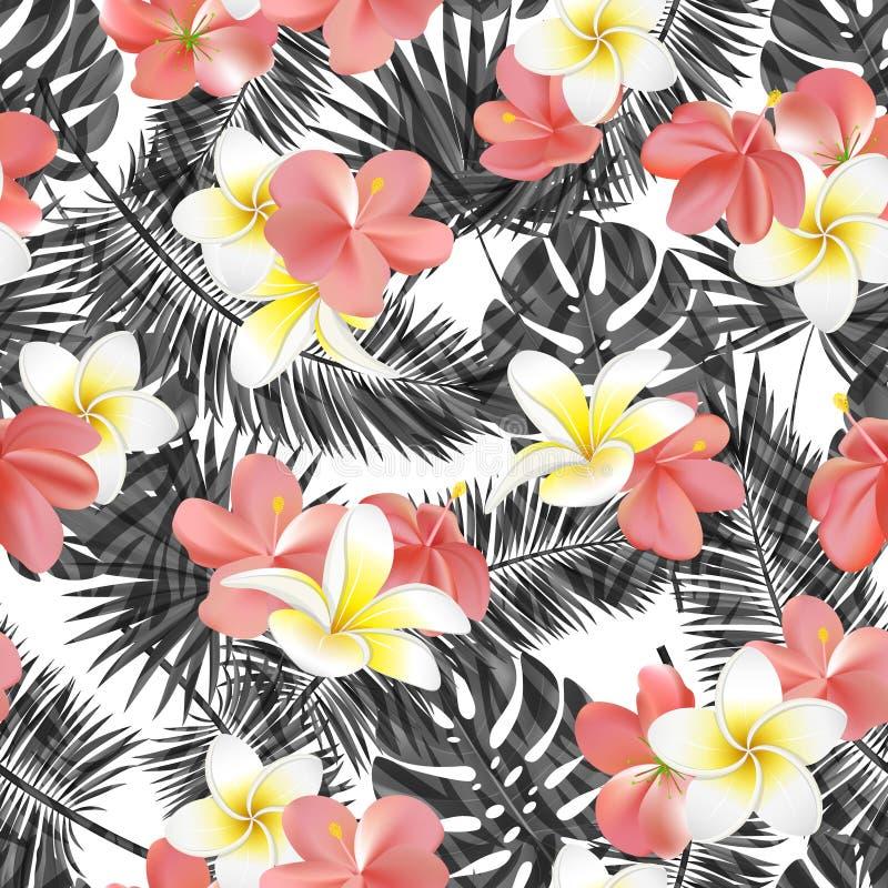 Красивая безшовная флористическая предпосылка картины лета с черно-белыми тропическими листьями и цветками ладони Улучшите для wa иллюстрация штока