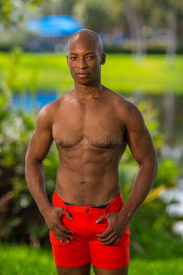 Красивая без рубашки мужская модель фитнеса представляя в парке стоковое изображение