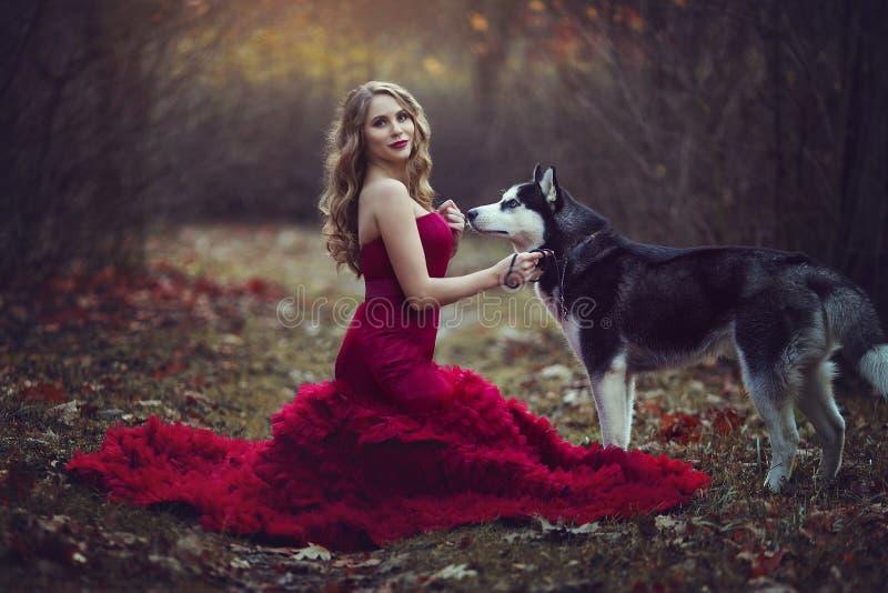 Красивая белокурая девушка в шикарном красном платье, идя с осиплой собакой в фото леса осени фантастических атмосферических стоковые фото