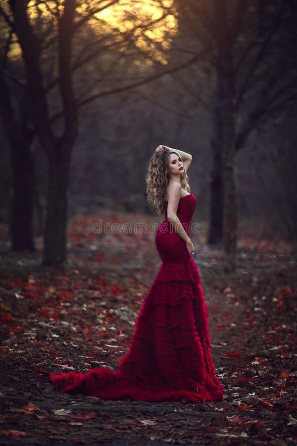 Красивая белокурая девушка в шикарном красном платье представляя в фото fairy леса осени фантастических атмосферических в творчес стоковая фотография rf
