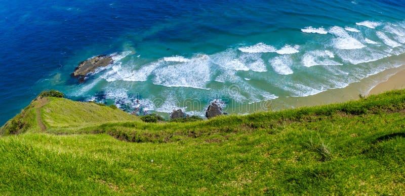Красивая береговая линия Новой Зеландии стоковая фотография rf