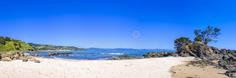 Красивая береговая линия Новой Зеландии стоковая фотография