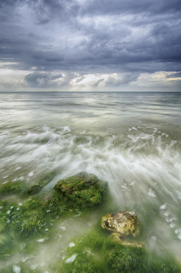 Красивая белая подача волны над водорослями и утесом на пляже стоковое изображение