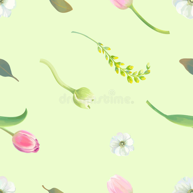 Красивая ботаническая безшовная картина с тюльпанами, белыми и желтыми цветками и свежими листьями против салатового иллюстрация штока