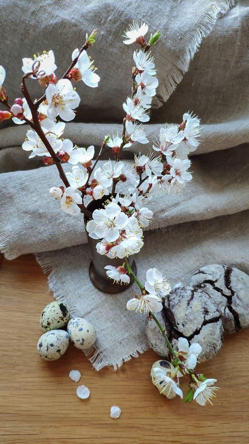 Красивая ветвь белый цвести абрикосов в вазе на естественной ткани и светлых деревянных печеньях поверхности и пирожного с трипер стоковое фото rf