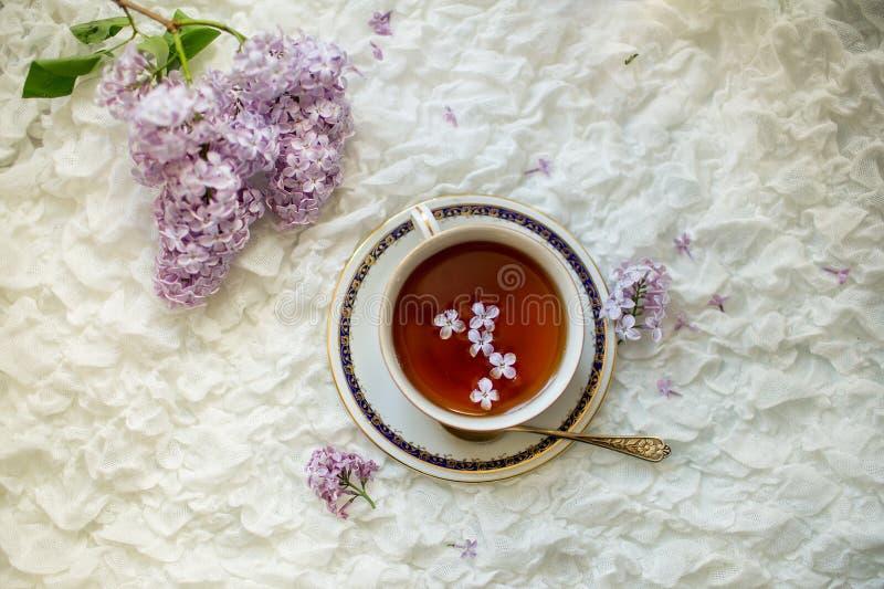 Красивая ветвь цветков сирени и чашки чаю стоковая фотография rf