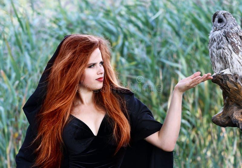 Красивая ведьма с сычом стоковые фото