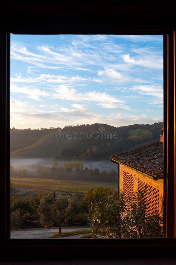 Красивая виноградина fields в Chianti от утра увиденного через окно в Chianti, Италии стоковые изображения
