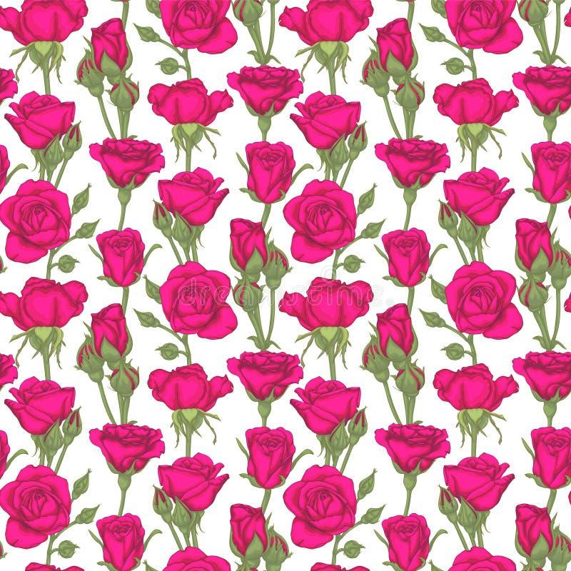 Красивая винтажная безшовная картина с розами, rosebuds, листьями и стержнями поздравительная открытка дизайна и приглашение  иллюстрация штока