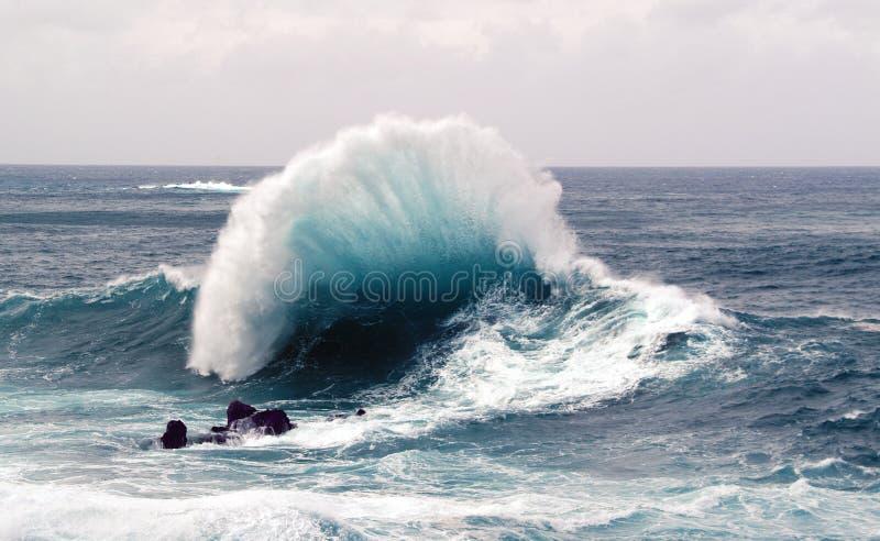 Красивая волна шторма на северном побережье острова Мадейры в Атлантике стоковые изображения rf