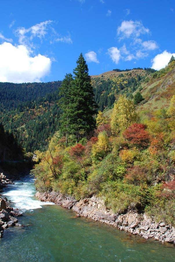 Красивая гора рекой стоковые изображения rf