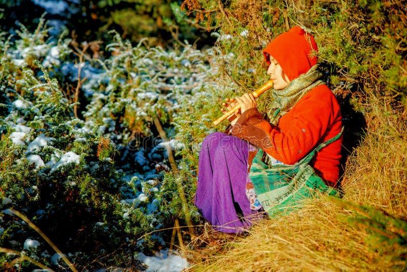 Красивая девушка в историческом костюме играя ее каннелюру в лесе стоковое фото rf