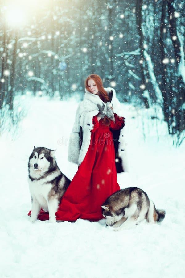 Красивая девушка в пальто овчины с собаками стоковое изображение rf