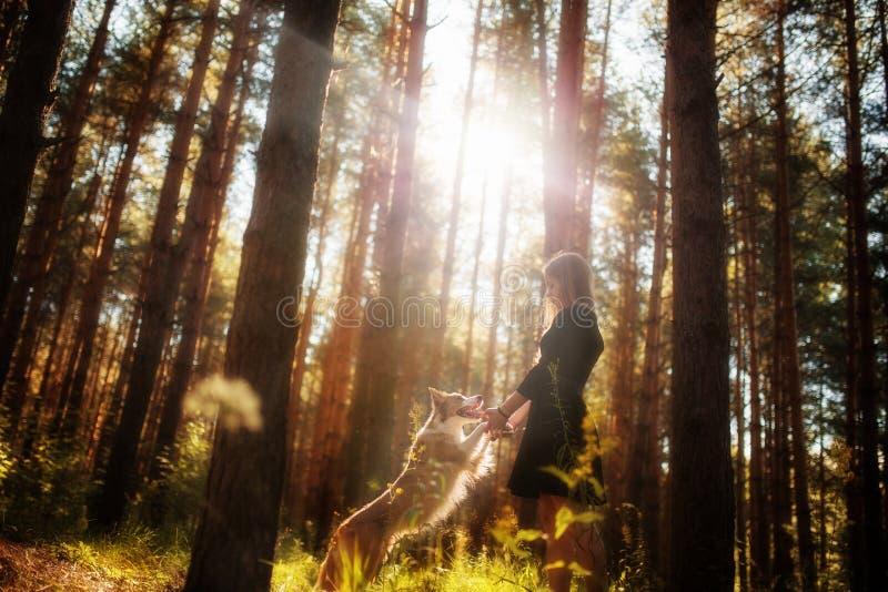 Красивая девушка в платье в лесе с ее собакой скача и играя стоковые фотографии rf