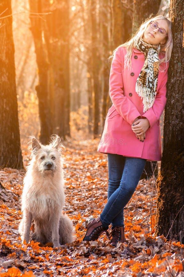 Красивая девушка в стойке леса осени около дерева и смотреть камеру на солнечном свете с большой собакой стоковое изображение