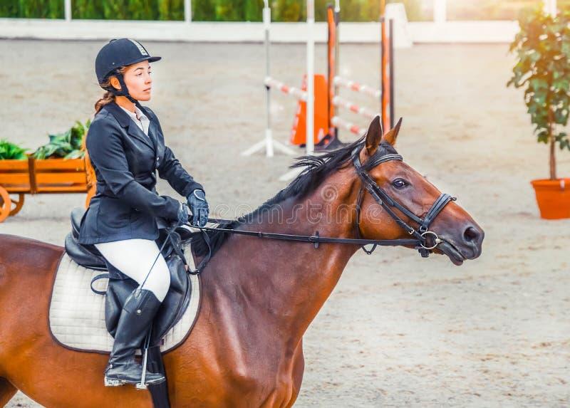 Красивая девушка в форме и лошади dressage залива на конкуренции скакать выставки стоковая фотография rf