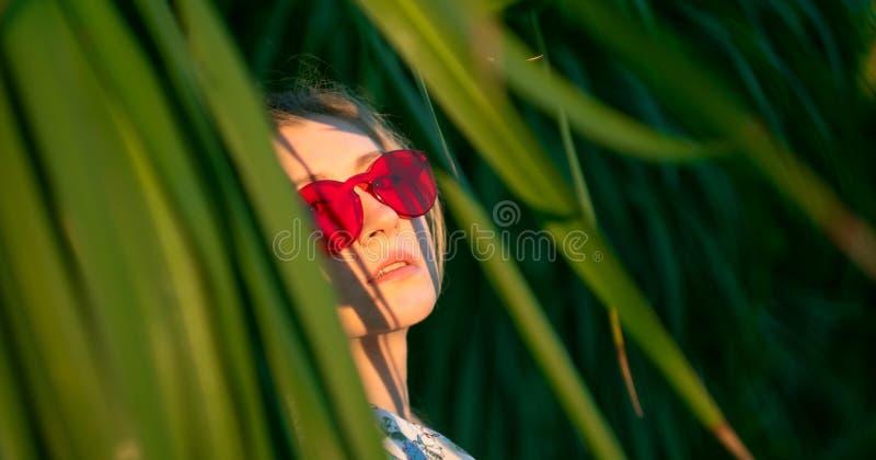 Красивая девушка среди листьев экзотического дерева на заходе солнца стоковые фото