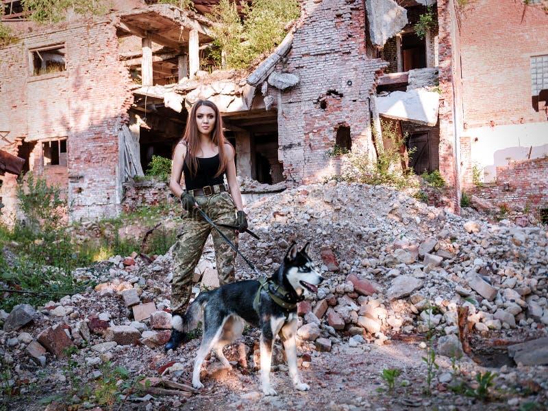 Красивая девушка с сибирской лайкой стоковая фотография