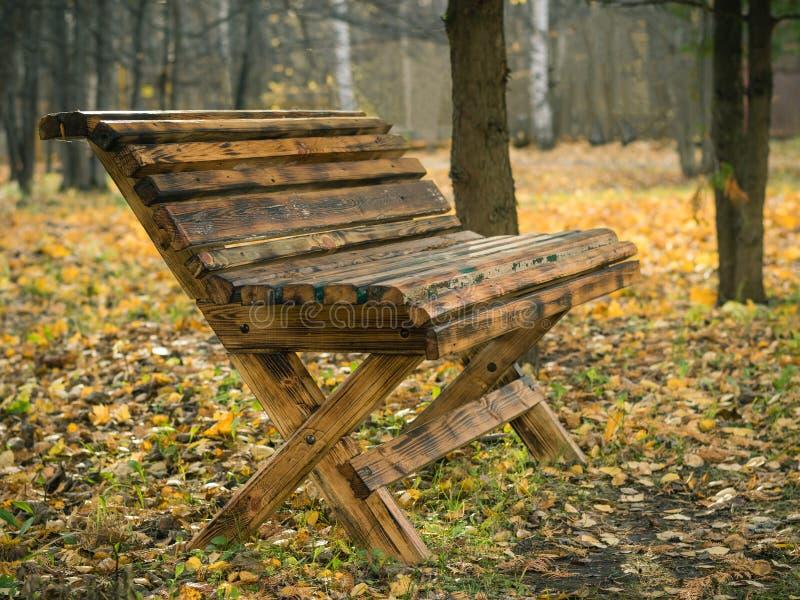 Красивая деревянная скамья в парке города осени стоковые фото