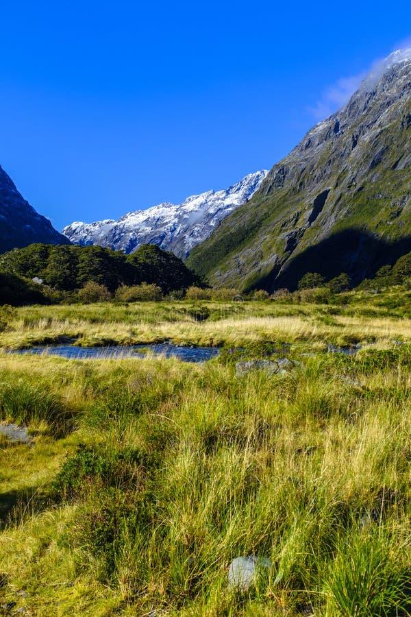 Красивая долина горы в Новой Зеландии стоковое фото
