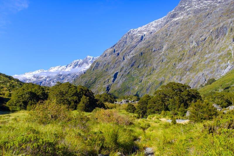 Красивая долина горы в Новой Зеландии стоковое изображение