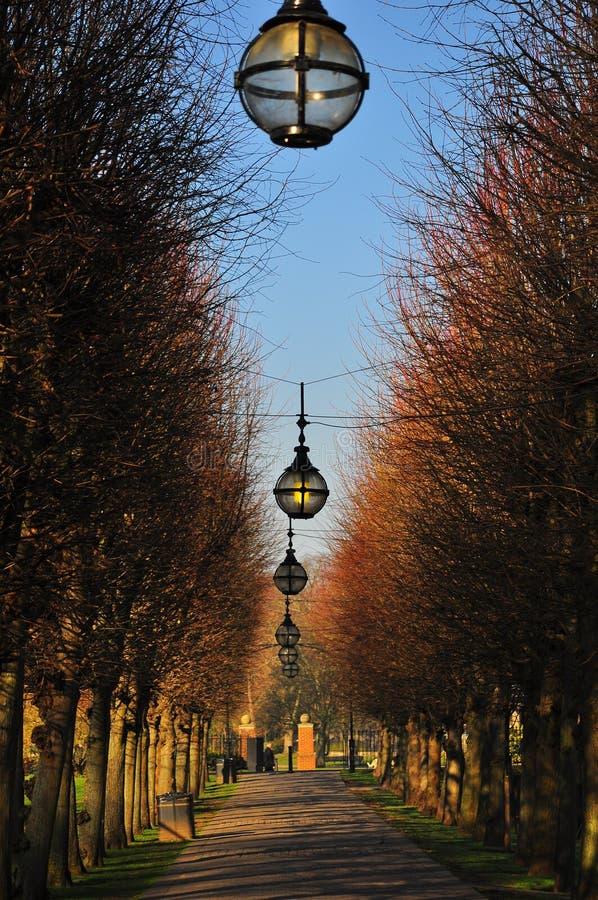 Красивая дорожка булыжника в Англии стоковое изображение