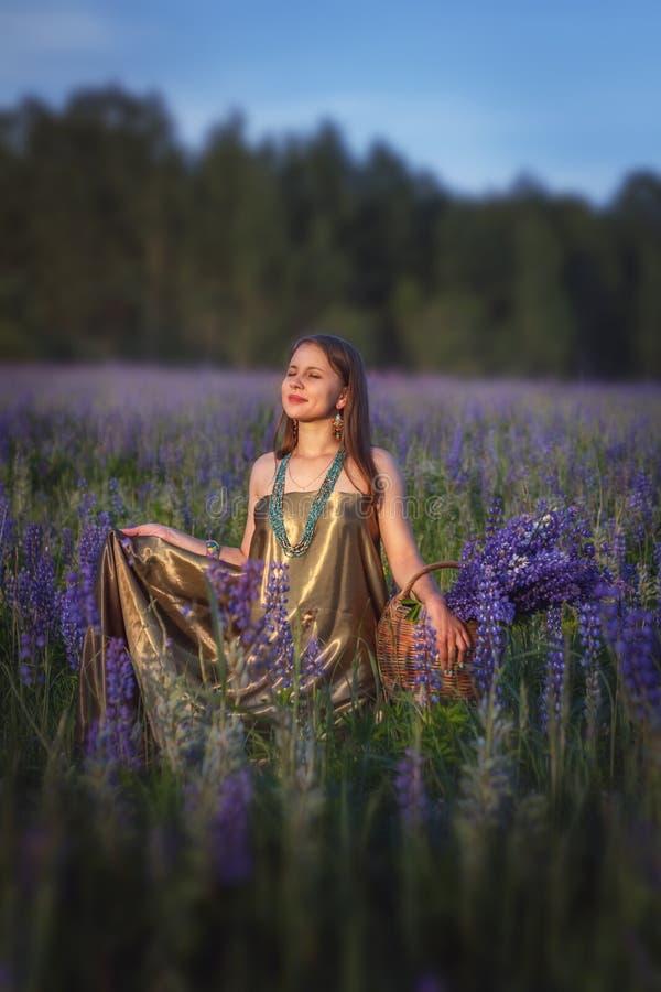 Красивая девушка в поле lupine стоковые фотографии rf