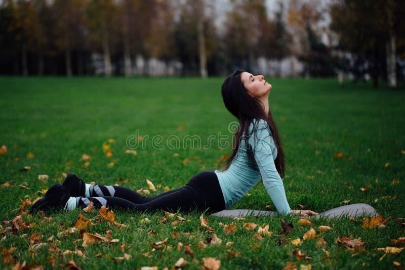 Download Красивая девушка протягивая на траве Sporty молодая спортсменка брюнет на циновке йоги - верхней собаке облицовки Стоковое Изображение - изображение насчитывающей здоровье, люди: 81805585