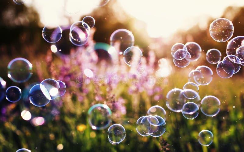Красивая естественная предпосылка с лугом зеленого цвета ясности лета с розовыми цветками и пузырями мыла ярко shimmer и лететь в стоковые изображения rf