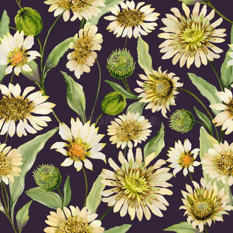 Красивая желтая и бежевая маргаритка цветет с зелеными листьями дальше глубокими - коричневая предпосылка Безшовная картина весны иллюстрация вектора