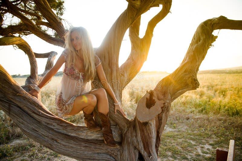 Красивая женщина в золотом поле 6 сена стоковая фотография
