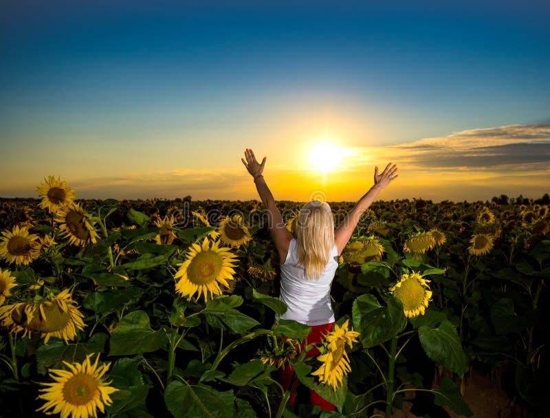 Красивая женщина наслаждаясь времененем в поле солнцецвета стоковое изображение rf