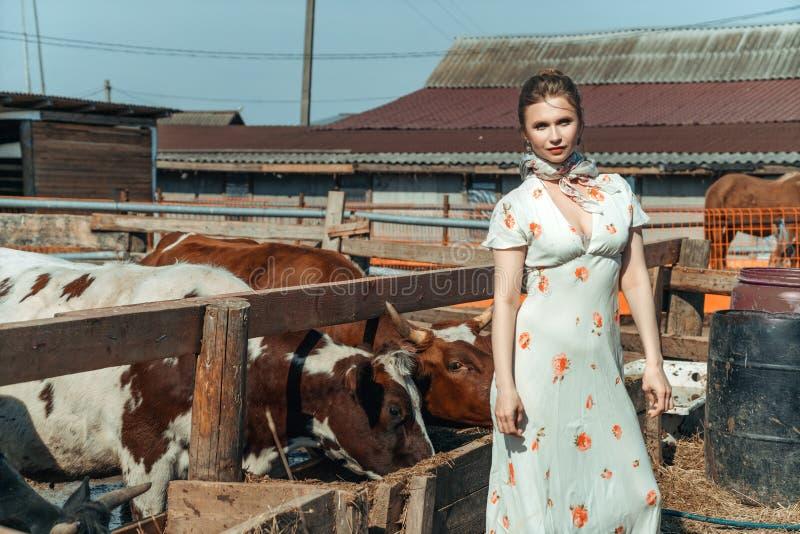 Красивая женщина на ферме кормит скотин с сеном стоковое изображение