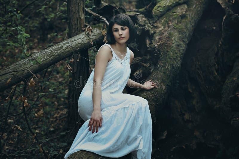 Красивая женщина представляя на мертвом дереве стоковые изображения rf