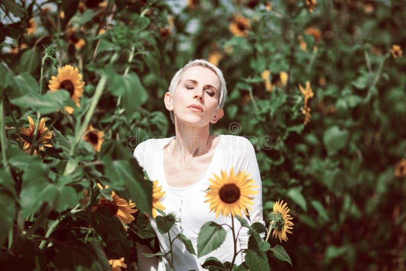 Красивая женщина среднего возраста в сельской сцене поля outdoors с солнцецветами стоковые фотографии rf