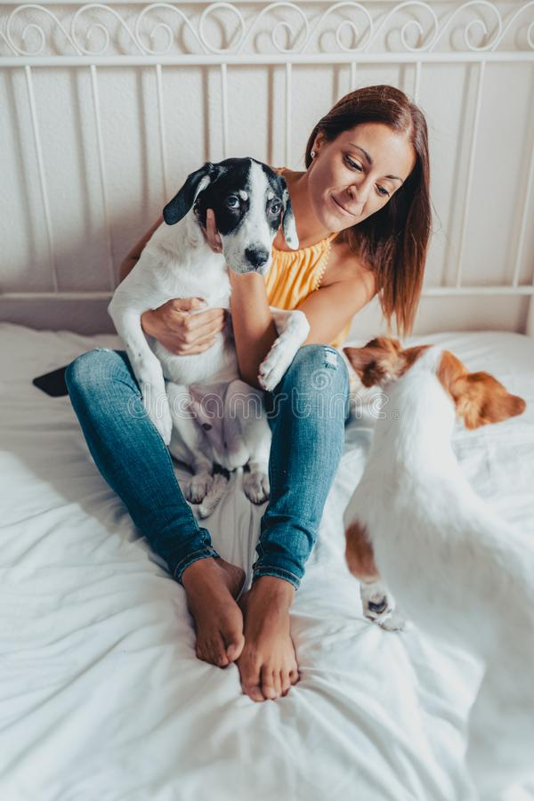 Красивая женщина с принимать 2 собак заботит они в кровати Щенок Лабрадор и Джек Рассел стоковая фотография