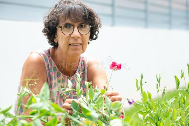Красивая зрелая женщина в саде с цветками стоковая фотография rf