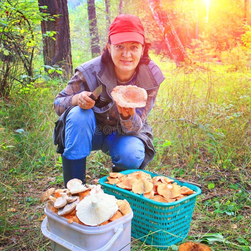 Красивая зрелая женщина с богатым сбором грибов в лесе стоковые фото