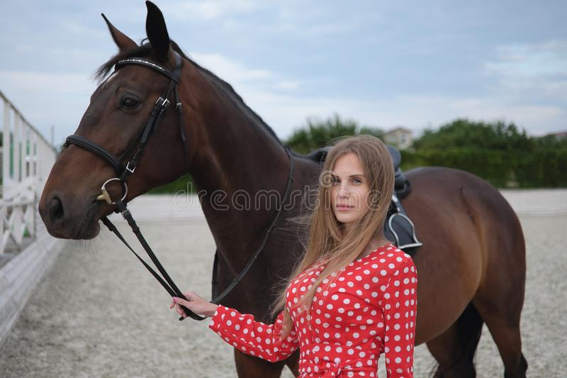 Красивая и сексуальная блондинка с большими грудями в красном платье и лошади коричневых костюмов стоковое изображение