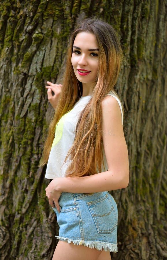 Красивая маленькая девочка готовя старое большое дерево в парке стоковое изображение