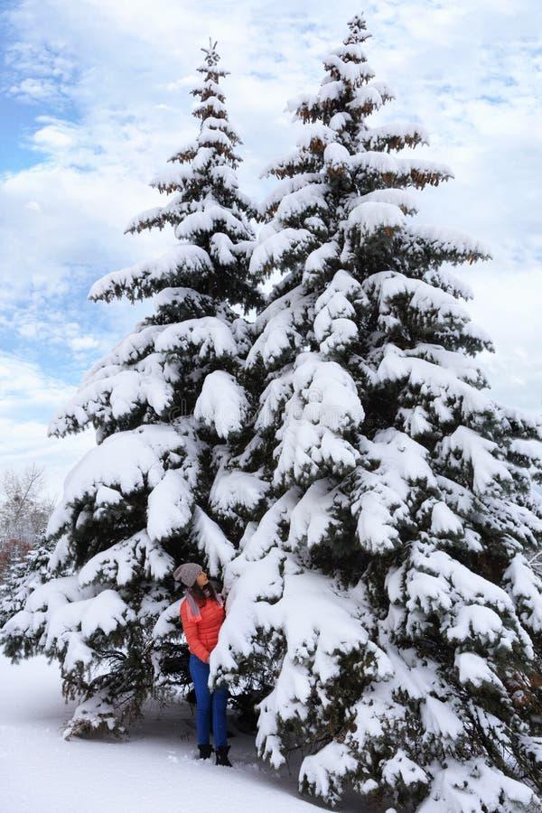 Красивая маленькая девочка идет в древесины около высокорослых и худеньких покрытых снег елей стоковые изображения rf
