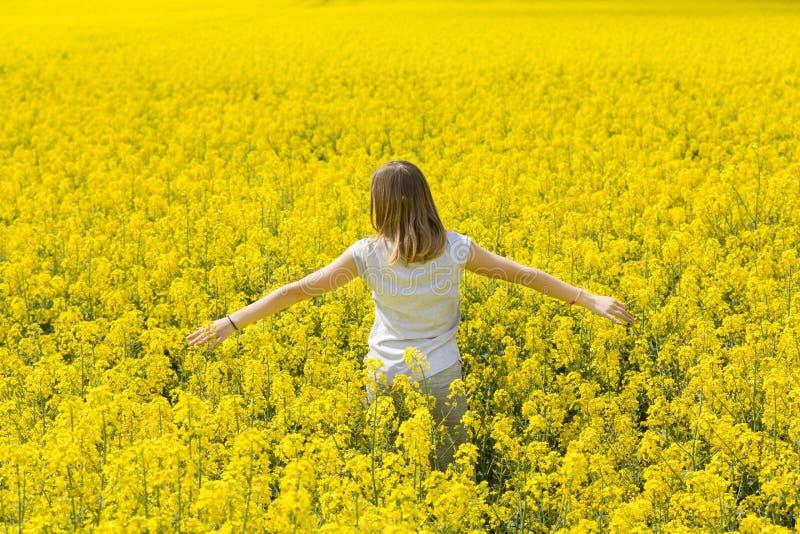 Красивая маленькая девочка наслаждается нюхом желтого цветистого поля стоковые изображения