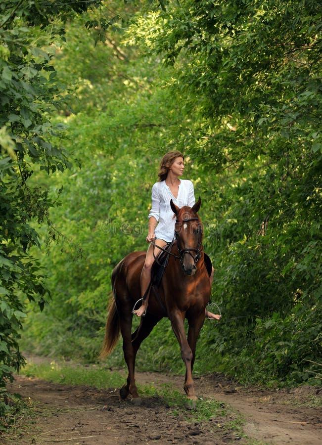 Красивая модельная девушка едет с лошадью в дороге древесин в вечере вниз стоковое фото