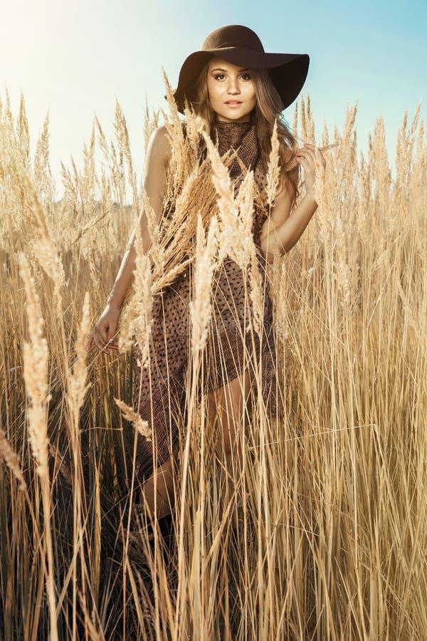Красивая модель на луге tallgrass на золотом часе стоковые фотографии rf