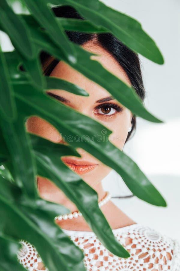Красивая молодая женщина брюнета ослабляя и представляя для камеры стоковое изображение rf