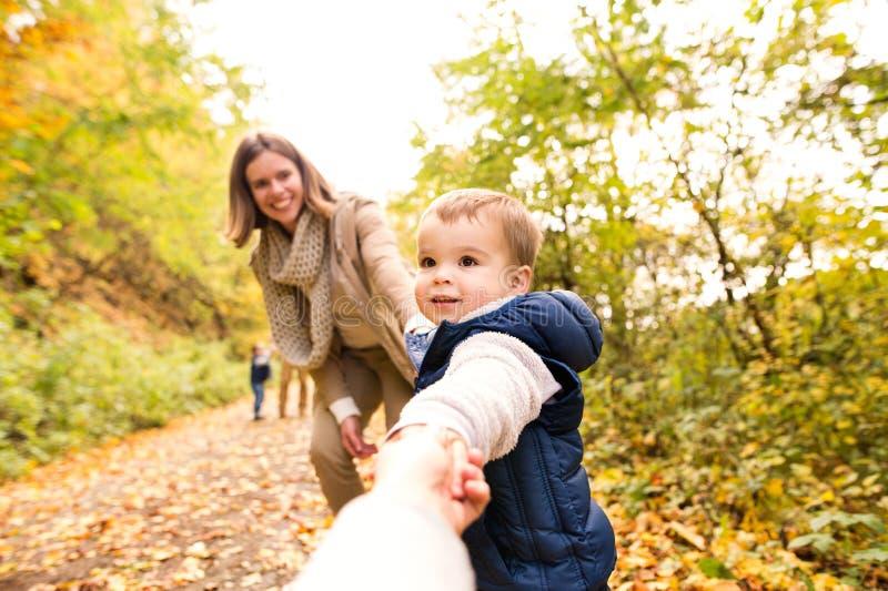 Красивая молодая семья на прогулке в лесе осени стоковые фото