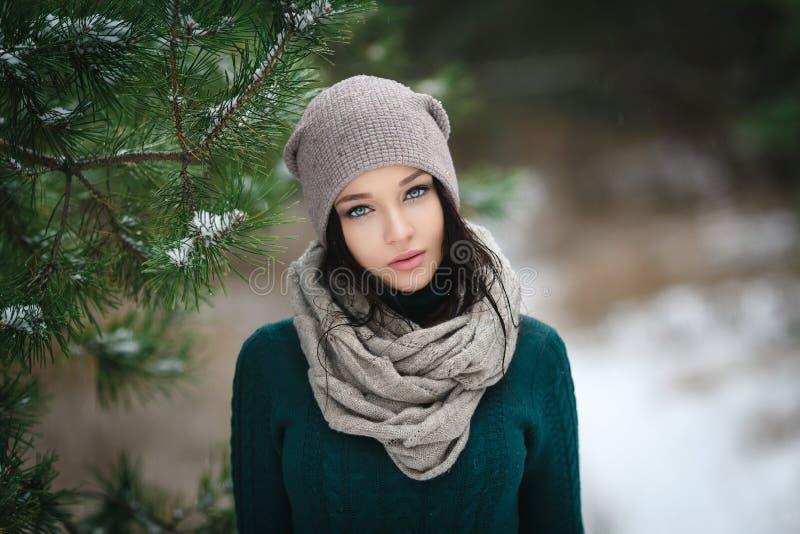 Красивая молодая женщина в wintertime внешнем стоковое фото rf