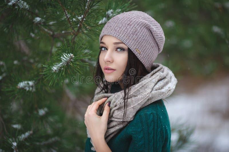 Красивая молодая женщина в wintertime внешнем стоковая фотография
