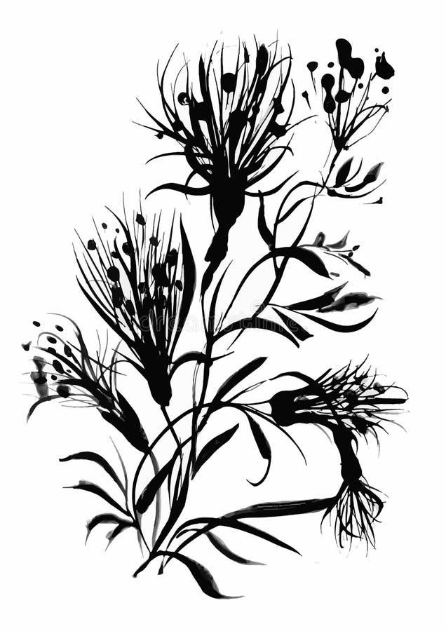 Красивая нарисованная вручную monochrome иллюстрация трав бесплатная иллюстрация